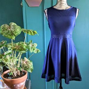 Express Royal Blue Mesh Skater Dress